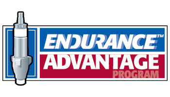 Endurance Advantage
