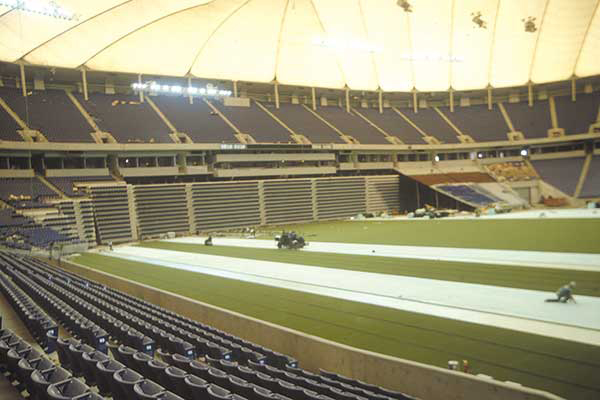 striping metrodome 1980